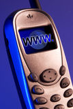 Connected to the world. Portable phone with a blue screen and www and globe Royalty Free Stock Photo
