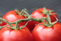 Connected tomatoes Stock Photos