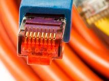 Connecteur de réseau Photographie stock