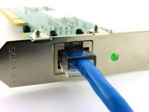 Connecteur de réseau local. images libres de droits