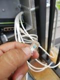 connecteurs rj45 Images libres de droits