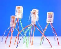 Connecteurs RJ45 pour le réseau Image libre de droits