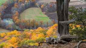 Connecticut Fall Foliage. View from Mount Royalty Free Stock Photo