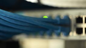 Connecting Cable And The LED Lights Blinks. The Internet Server And Server of Local Network. stock footage