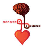 Connection between heart and brain stock photos