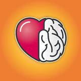 Connection of Heart and Brain Royalty Free Stock Photo