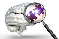 Connection puzzle piece on magnifying glass and human brain Royalty Free Stock Photography