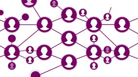 Connection structure, animation abstract background. Social media, network of people icons animation on white background
