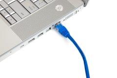 Connectivité - câble d'Ethernet dans l'ordinateur Image libre de droits