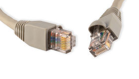 Connector RJ45. On a white background Stock Image