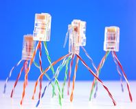 Connectors RJ45 for network Royalty Free Stock Image