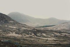 Connemara山景夏令时 图库摄影