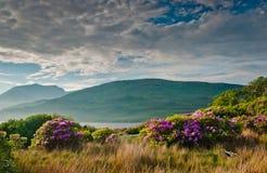 connemara海湾killary的爱尔兰 免版税库存照片