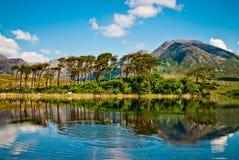 Connemara的湖,爱尔兰 免版税图库摄影