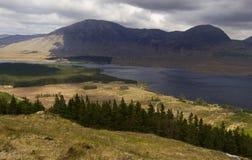 Connemara,国家公园在戈尔韦爱尔兰 免版税图库摄影