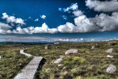 Connemara Стоковые Изображения RF