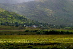 Connemara Fields, Ireland. Ireland. View of Connemara  valley Stock Photography