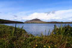 Connemara Lake with flowers and mountains. Clouds sun summer road trip travel relax Royalty Free Stock Photo