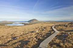 Connemara National Park in Ireland. The path that leads to summit of Diamond hill at sunrise in Connemara National Park in Ireland Royalty Free Stock Photo
