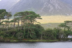 Connemara National Park , Ireland. Connemara National Park is a vast expanse of mountains, bogs and lakes Stock Photography