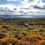 Connemara. View of Connemara Ireland nature and sea Stock Photos