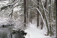 Connetquot河-雪 库存图片