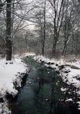 Connetquot河- Oakdale纽约 图库摄影