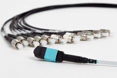 Connettori della st e di MTP di fibra ottica (MPO) Fotografie Stock Libere da Diritti