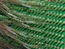 Connettori a fibra ottica nelle case di collegamento di un pannello componenti elettrici alla banda larga Immagini Stock Libere da Diritti