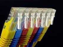 Connettori rj45 del Internet Fotografia Stock Libera da Diritti