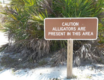 Connexion d'avertissement la Floride d'alligator Images libres de droits
