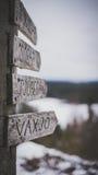 Connexion de direction la forêt Images libres de droits
