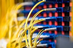 Connexion réseau Photos libres de droits