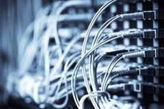 Connexion réseau Photo libre de droits