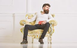Connoisseur of literature concept. Macho spends leisure with book. Man with beard and mustache sits on armchair and stock photo