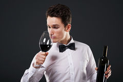 Connoisseur of wine Stock Images