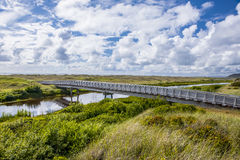 Connor creek bridge. Royalty Free Stock Images