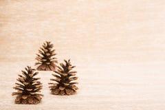 Cono como decoración del árbol de abeto en fondo iluminado Imagen de archivo libre de regalías