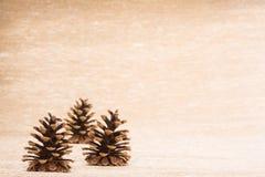 Cono como decoración del árbol de abeto en fondo iluminado Imagen de archivo