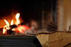 Cono de abeto en el lugar del fuego Foto de archivo libre de regalías