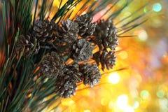 Cono de la decoración del árbol de navidad Foto de archivo libre de regalías