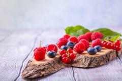 Cono de la galleta del azúcar con las bayas del bosque horizontales Imagen de archivo