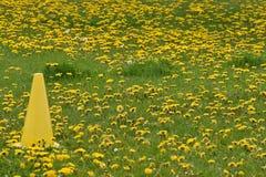 Cono del amarillo del terreno de juego del día de maniobras Imagenes de archivo