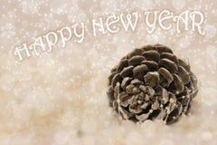 Cono del cedro di Natale e del nuovo anno Fotografia Stock