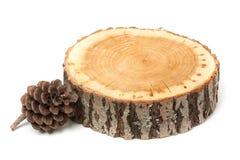 Cono del cedro e fetta di legno, isolata Immagine Stock Libera da Diritti