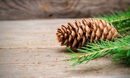 Cono del pino con el árbol de abeto en fondo de madera fotografía de archivo libre de regalías