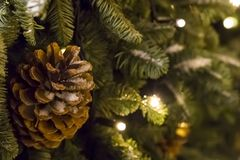 Cono del pino cubierto con la Navidad del Año Nuevo de la guirnalda de la rama de árbol de navidad de la nieve que brilla intensa Imagen de archivo libre de regalías