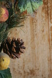 Cono del pino de la Navidad Imagen de archivo