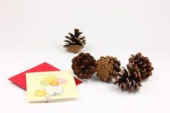 Cono del pino de la Navidad Imágenes de archivo libres de regalías