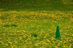 Cono del verde del terreno de juego del día de maniobras Foto de archivo libre de regalías
